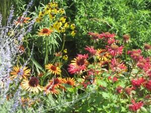 Meadow walk in Longwood Gardens
