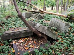 tree thru a grave