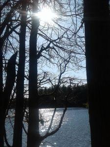 shimmery lake